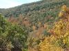 bash_bish_autumn64