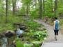 Brinton Brook Sanctuary
