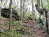 catskills_hike_wreck024