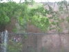 charleston2010_01