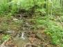 Catskills Hike - Kaaterskill