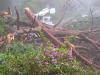 laurel_canyon_storm11
