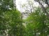mohonk_preserve14